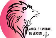 Handball : section loisirs