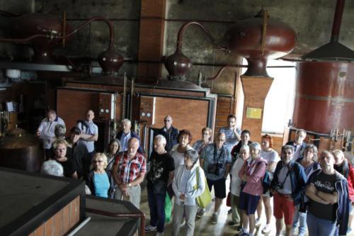 Visite d'une distillerie de Calvados